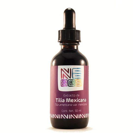 tilia Mexicana